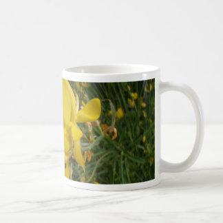 Almorta amarilla taza de café