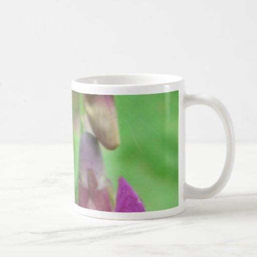 Almorta de primavera taza básica blanca