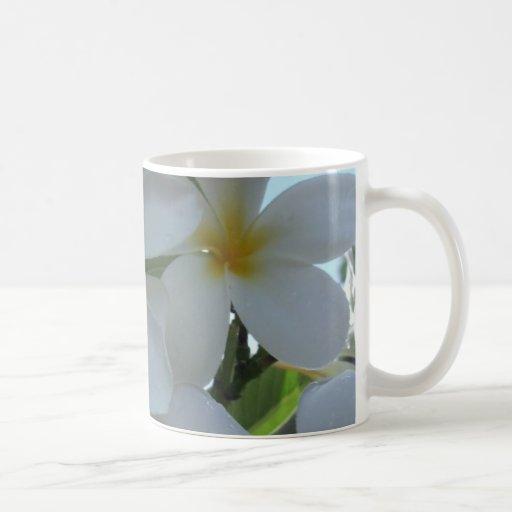 Almost Edible Frangipani Classic White Coffee Mug