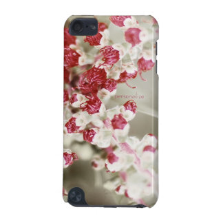 Almost in bloom iPod touch 5G cover