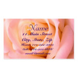 Almost Pink Profile Card Double-Sided Standard Business Cards (Pack Of 100)
