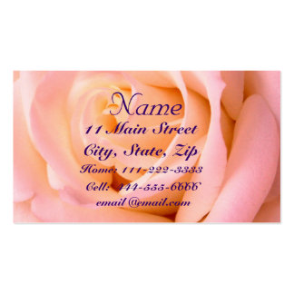 Almost Pink Profile Card Business Card