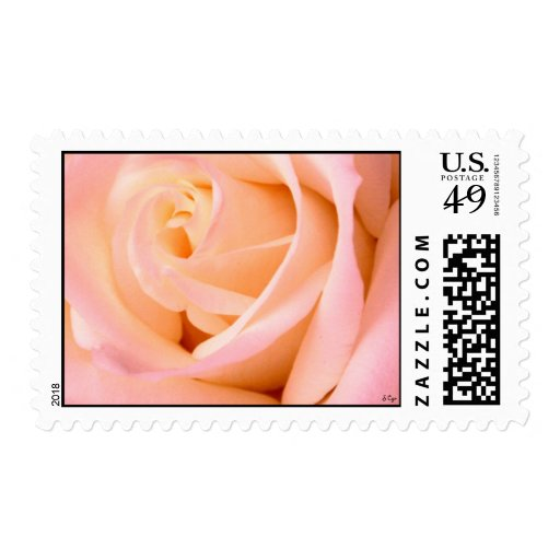 almost pink, S Cyr Stamps