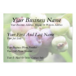 Almost Ripe - Blueberries Large Business Cards (Pack Of 100)