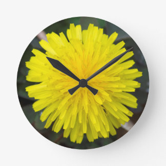 Almost Time for Wishes Dandelion Clock