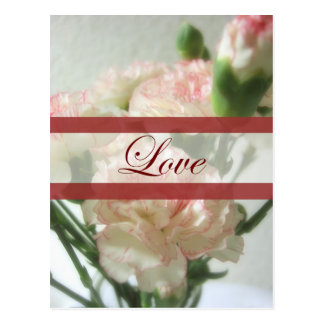 Almost White Carnations 6 Love Wedding Postcard