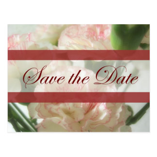 Almost White Carnations 6 Save the Date Wedding Postcard