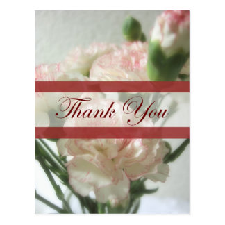 Almost White Carnations 6 Thank You Postcard