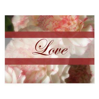 Almost White Carnations 7 Love Wedding Postcard