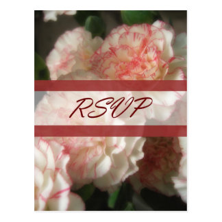 Almost White Carnations 7 RSVP Wedding Postcard