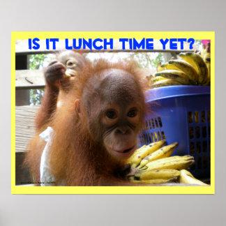 Almuerzo de los bebés del orangután póster