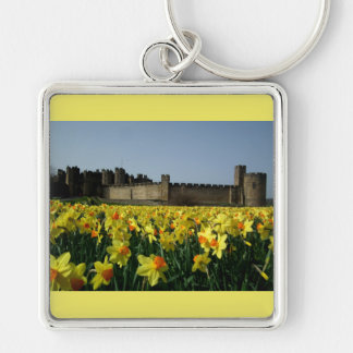 Alnwick Castle from the Gardens Keychain