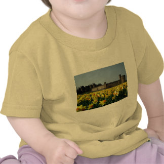 Alnwick Castle from the Gardens Tee Shirts