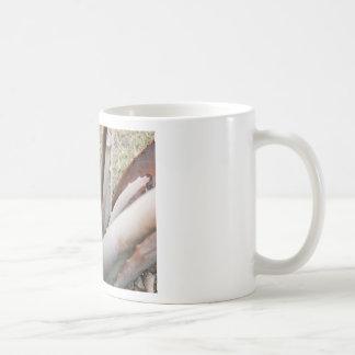 Aloe 1 Close Up Coffee Mug