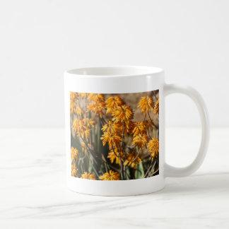 Aloe (Aloe berhana) in Africa Coffee Mug