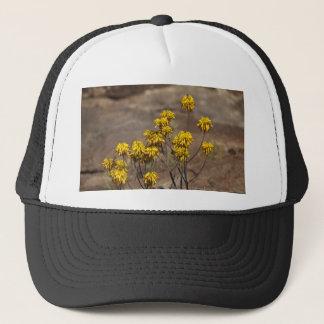 Aloe (Aloe berhana) Trucker Hat