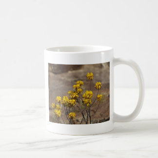 Áloe (berhana del áloe) taza clásica
