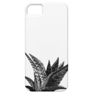 Aloe iPhone 5 Cases