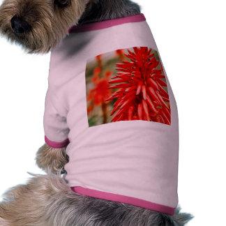 Aloe Flower Dog T-Shirt