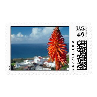 Aloe flower postage