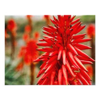 Aloe flowers custom invitations