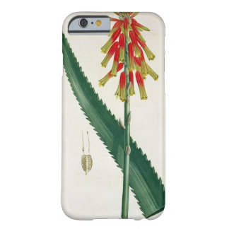 Aloe from 'Phytographie Medicale' by Joseph Roques Barely There iPhone 6 Case