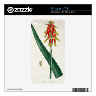 Aloe from 'Phytographie Medicale' by Joseph Roques iPhone 4S Skin