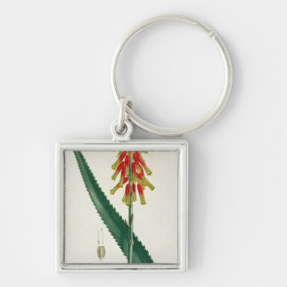 Aloe from 'Phytographie Medicale' by Joseph Roques Keychain