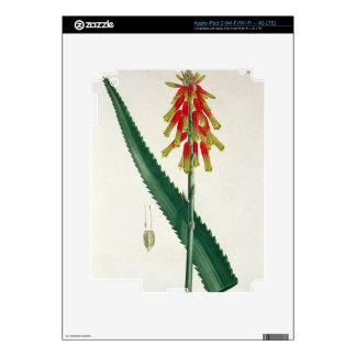 Aloe from 'Phytographie Medicale' by Joseph Roques Skins For iPad 3