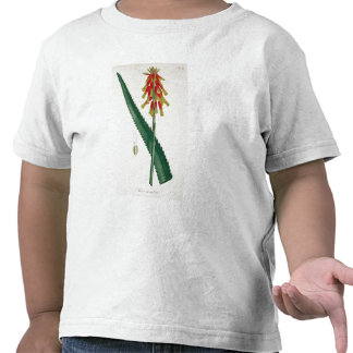 Aloe from 'Phytographie Medicale' by Joseph Roques Tshirts