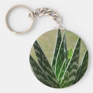 "Aloe ""Gator"" Variegata Succulent Key Chain"