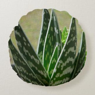 "Aloe ""Gator"" Variegata Succulent Round Pillow"
