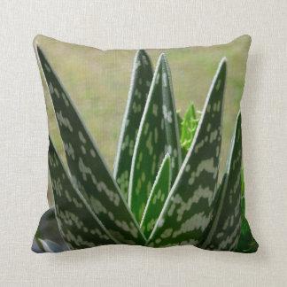 """Aloe """"Gator"""" Variegata Succulent Throw Pillow"""