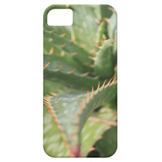 Aloe iPhone 5 Case