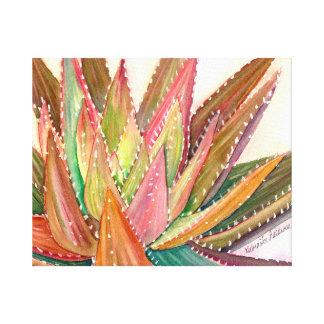 Aloe nobilis watercolor by Debra Lee Baldwin Canvas Print