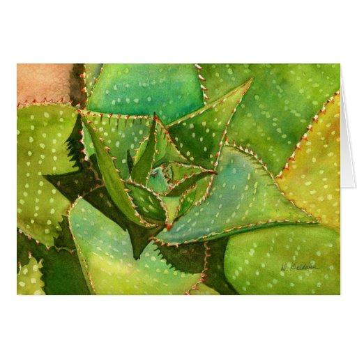 Aloe notecard greeting card