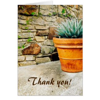 Aloe Plant Thank You for Your Caretaking Greeting Card