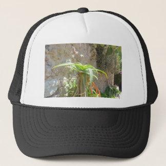 Aloe Plant. Trucker Hat