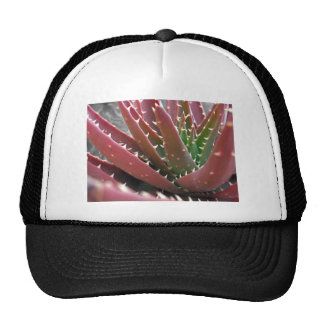 Áloe Rojo-Verde Gorras De Camionero