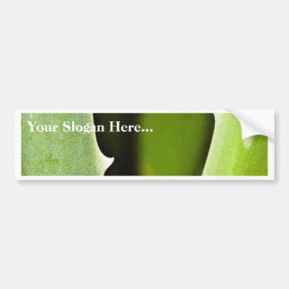 Aloe Vera Bumper Sticker