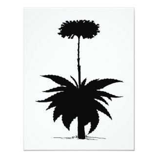 Aloe Vera Card