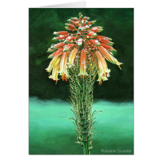 Aloe vera greeting cards