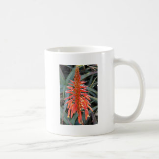 Aloe Vera Flower Coffee Mug