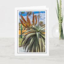 Aloe Vera greeting card