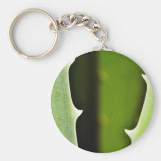 Aloe Vera Key Chain