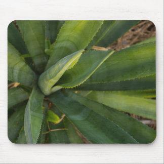 Aloe Vera Mouse Pad