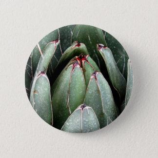 Aloe Vera Photo Plant Lover Round Badge Button