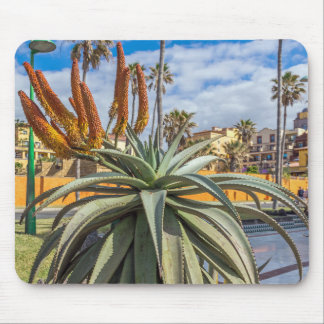 Aloe Vera plant and flowers mousepad