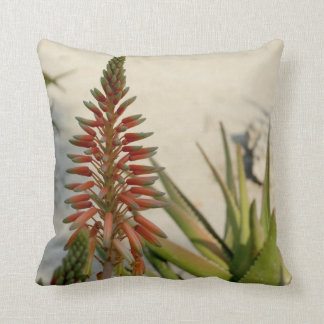 Aloe Vera Plant Photo Throw Cushion 41 cm x 41 cm