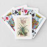 Aloe Vera Vulgaris, from 'Phytographia Curiosa', p Bicycle Playing Cards